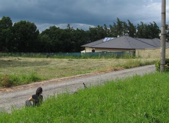 RDZL pozemek2